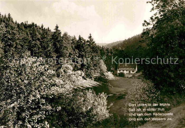 AK / Ansichtskarte Besenfeld Schwarzwaldmuehle Kat. Seewald