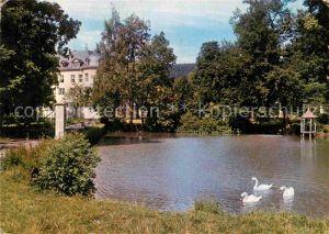 AK / Ansichtskarte Waechtersbach Schloss Schlossteich Schwaene Kat. Waechtersbach