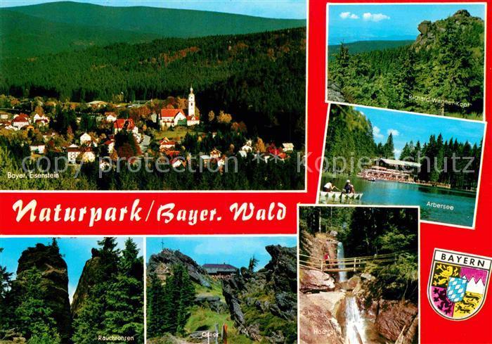 AK / Ansichtskarte Bayerischer Wald Naturpark Arbersee