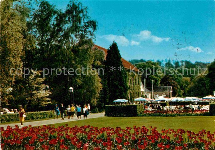 AK / Ansichtskarte Bad Driburg Kurpark Kat. Bad Driburg