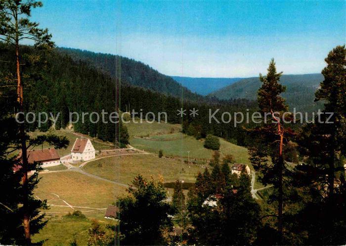 AK / Ansichtskarte Freudenstadt Christophstal mit Baerenschloessle Kat. Freudenstadt