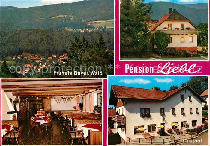 AK / Ansichtskarte Frahels Oberpfalz Pension Liebl  Kat. Lam