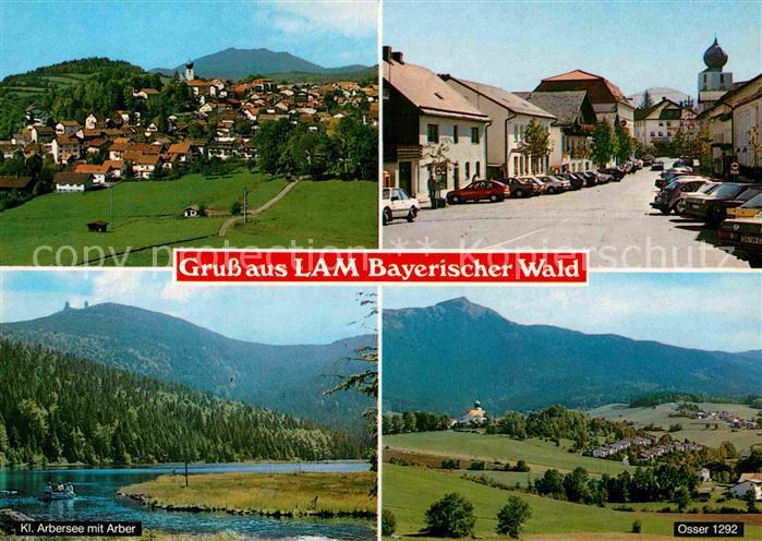 AK / Ansichtskarte Lam Oberpfalz Panorama Strassenpartie Kl Arbersee mit Arber Osser Kat. Lam