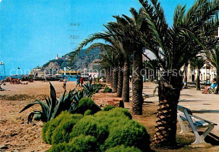 AK / Ansichtskarte Calella Paseo de las Palmeras Palmen Strand Kat. Barcelona