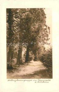 AK / Ansichtskarte Welzheim Wellingtourengruppe im Welzheimer Wald Kat. Welzheim