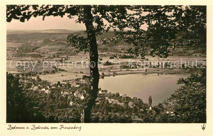 AK / Ansichtskarte Bodman Bodensee Panorama Blick vom Frauenberg