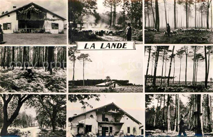 AK / Ansichtskarte La Lande de Goult La Ferme Les Hautes Fougeres Chemin dans la Foret Kat. La Lande de Goult