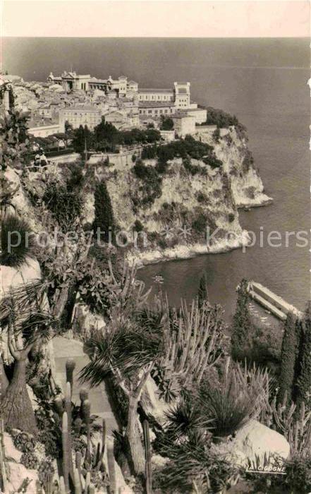 AK / Ansichtskarte Monaco Le Rocher vu du Jardin Exotique Kat. Monaco
