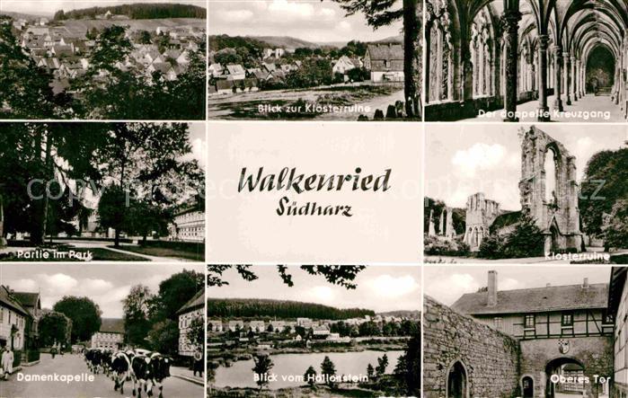 AK / Ansichtskarte Walkenried Klosterruine Kreuzgang Park Damenkapelle Viehtrieb Hallenstein See Oberes Tor Kat. Walkenried