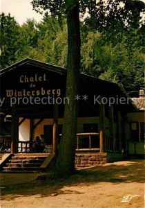 AK / Ansichtskarte Niederbronn les Bains Chalet du Wintersberg Kat. Niederbronn les Bains