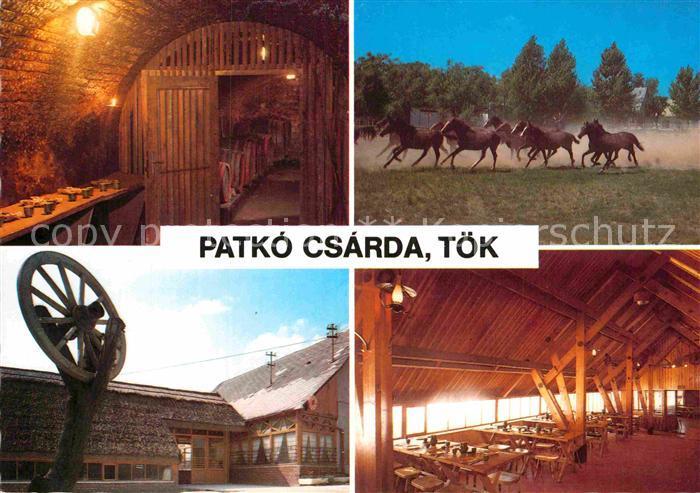AK / Ansichtskarte Toek Ungarn Patko Csarda 0