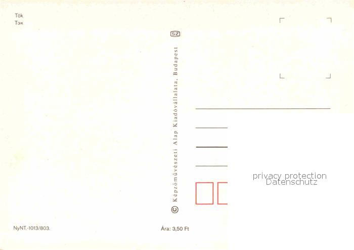 AK / Ansichtskarte Toek Ungarn Patko Csarda 1