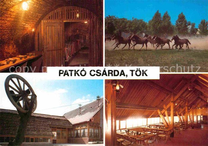 AK / Ansichtskarte Toek Ungarn Patko Csarda
