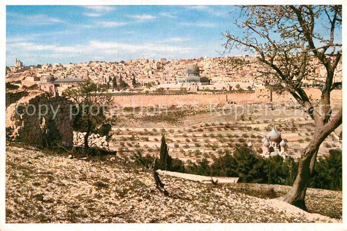 AK / Ansichtskarte Jerusalem Yerushalayim oelberg Kat. Israel