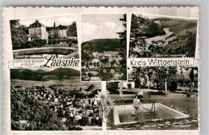 AK / Ansichtskarte Laasphe Schloss Wittgenstein Laasphetal Tretbecken Kat. Bad Laasphe