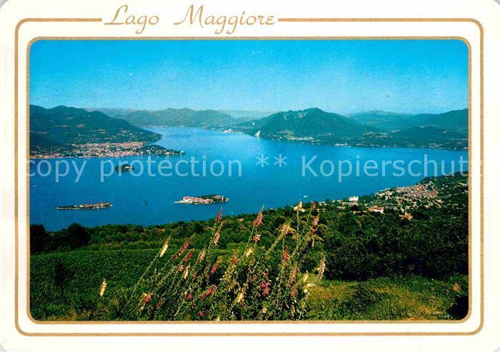 AK / Ansichtskarte Stresa Lago Maggiore Panorama Lago Maggiore