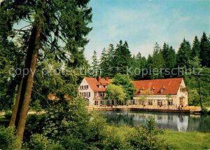 AK / Ansichtskarte Leopoldstal Lippe Waldhotel und Pension Silbermuehle Kat. Horn Bad Meinberg