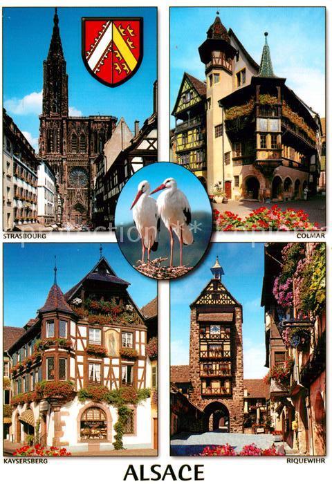 AK / Ansichtskarte Storch Alsace Strasbourg Colmar Kaysersberg Riquewihr Kat. Tiere