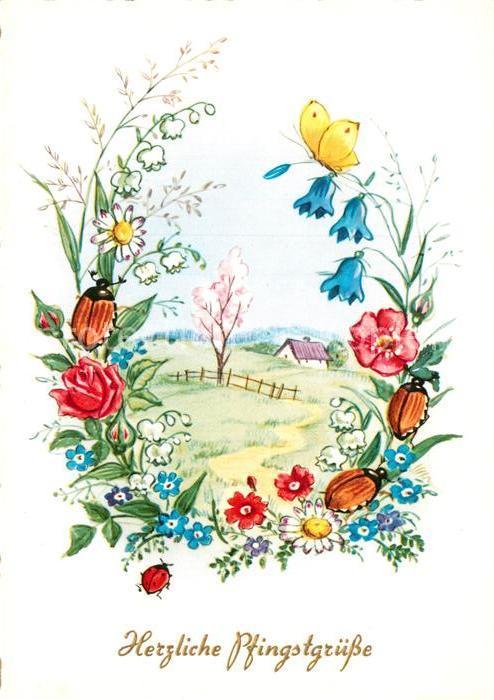 Ak Ansichtskarte Maikaefer Pfingsten Blumen Schmetterling Kat