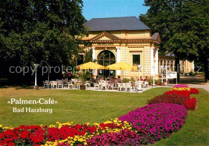 Ak Ansichtskarte Bad Harzburg Palmencafe In Der Trinkhalle Und