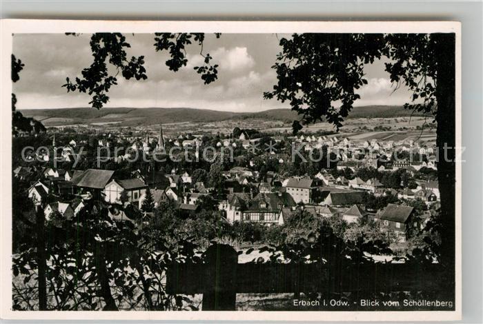 AK / Ansichtskarte Erbach Odenwald Blick vom Schoellenberg Kat. Erbach