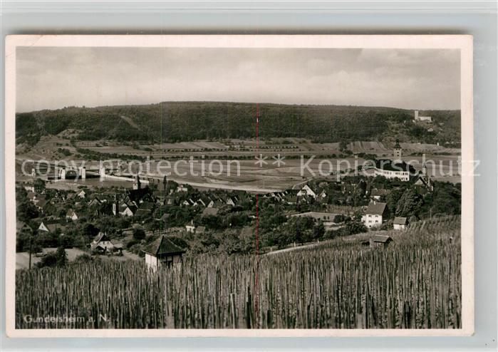 AK / Ansichtskarte Gundelsheim Neckar Panorama Schloss Horneck und Schloss Guttenberg