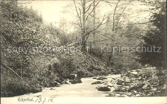AK / Ansichtskarte Eckertal Partie am Fluss Kat. Bad Harzburg