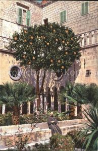 AK / Ansichtskarte Dubrovnik Ragusa Franziskaner Kloster  Kat. Dubrovnik
