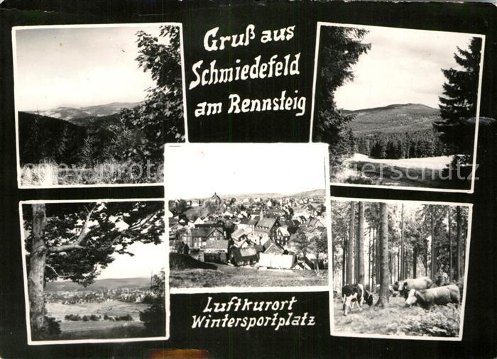 AK / Ansichtskarte Schmiedefeld Rennsteig  Kat. Schmiedefeld Rennsteig