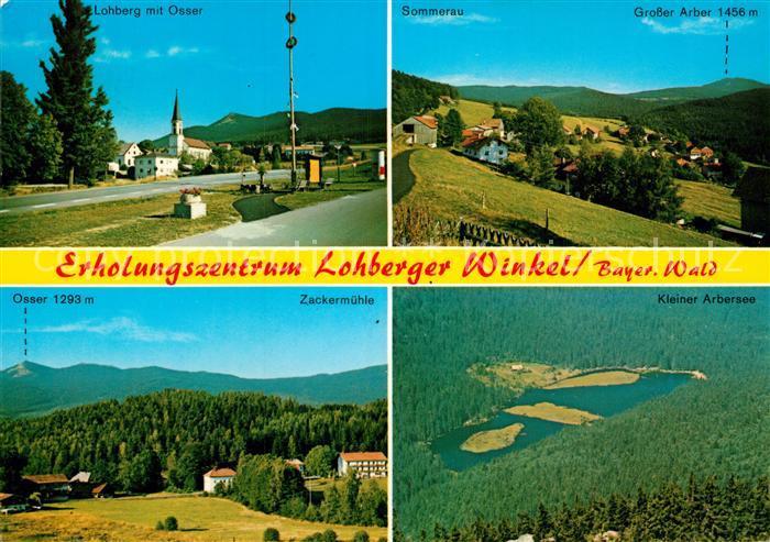 AK / Ansichtskarte Lohberg Lam Erholungszentrum Lohberger Winkel Sommerau Osser Arbersee Zackermuehle Kat. Lohberg