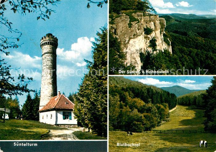 AK / Ansichtskarte Hameln Weser Suentelturm Suentel Blutbachtal