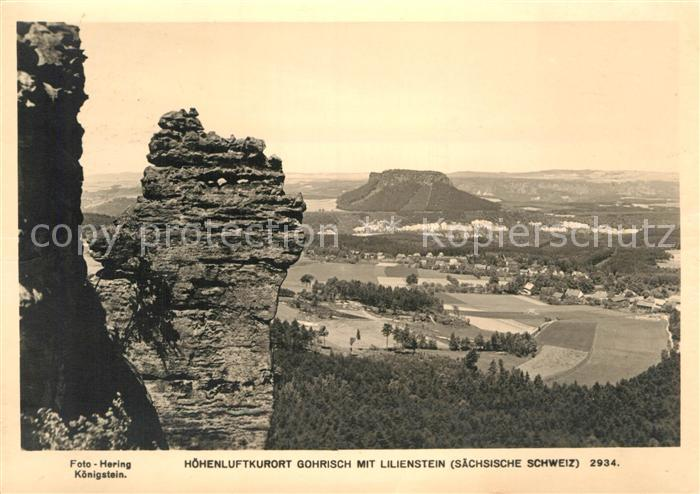 AK / Ansichtskarte Gohrisch Landschaftspanorama mit Lilienstein Tafelberg Kat. Gohrisch