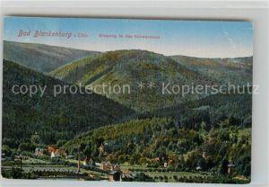 AK / Ansichtskarte Blankenburg Bad Schwarzatal  Kat. Bad Blankenburg