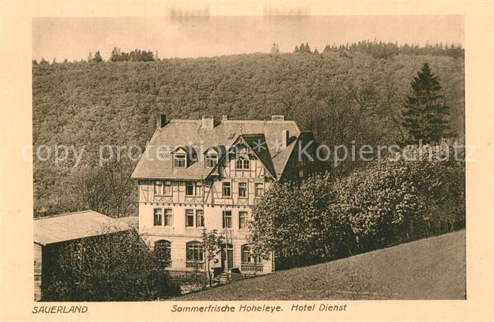 AK / Ansichtskarte Sauerland Hotel Dienst Hoheleye