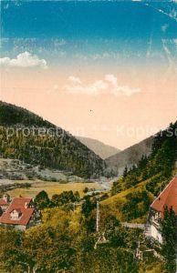 AK / Ansichtskarte Bad Liebenzell Teilansicht  Kat. Bad Liebenzell