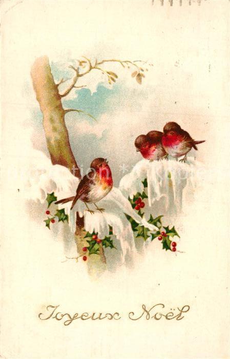 AK / Ansichtskarte Voegel Rotkehlchen Weihnachten Litho Kat. Tiere