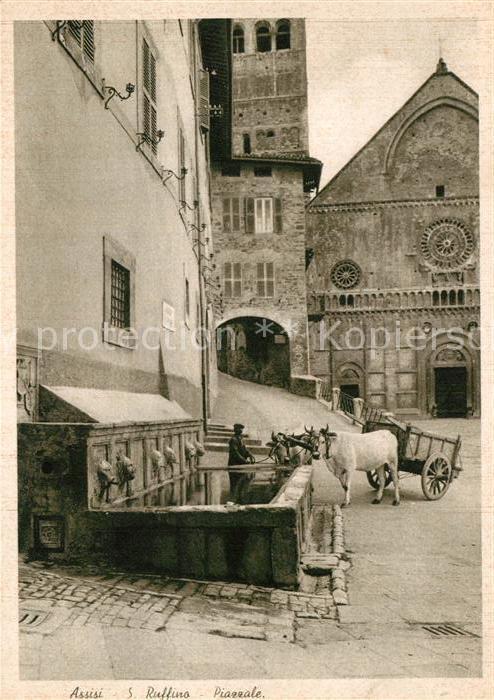 AK / Ansichtskarte Assisi Umbria Cattedrale San Ruffino Piazzale Kathedrale Ochsenkarren Kat. Assisi