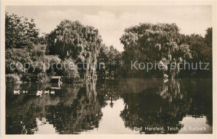 AK / Ansichtskarte Bad Hersfeld Teich im Kurpark Kat. Bad Hersfeld