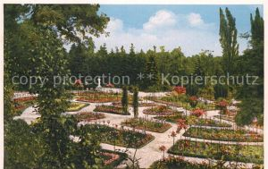 AK / Ansichtskarte Sangerhausen Suedharz Rosarium Kat. Sangerhausen