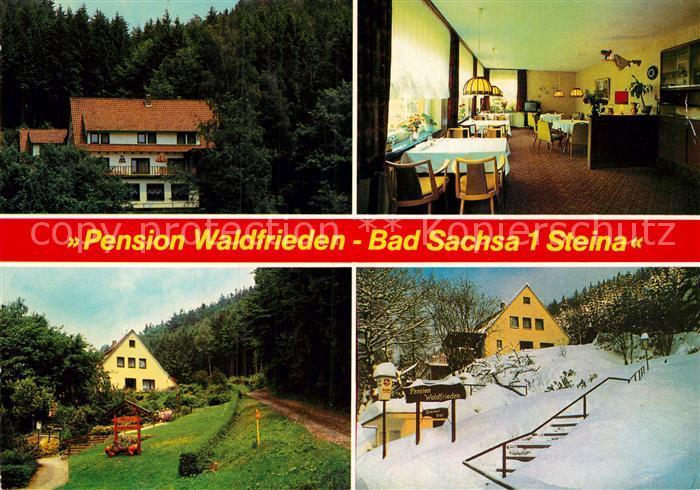 AK / Ansichtskarte Steina Suedharz Pension Waldfrieden Winter Kat. Bad Sachsa