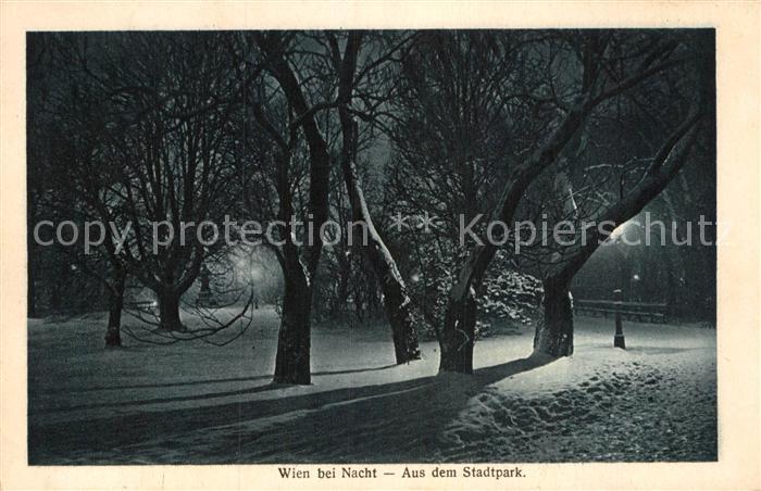 AK / Ansichtskarte Wien Stadtpark im Winter bei Nacht Kat. Wien