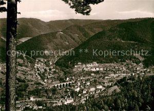 AK / Ansichtskarte Hornberg Schwarzwald Blick vom Busmarckfelsen Kat. Hornberg