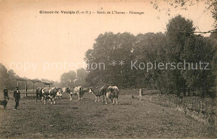 AK / Ansichtskarte Ozouer le Voulgis Bords de Yerres Paturages Kat. Ozouer le Voulgis