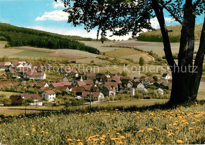 AK / Ansichtskarte Wickersrode Panorama Kat. Hessisch Lichtenau