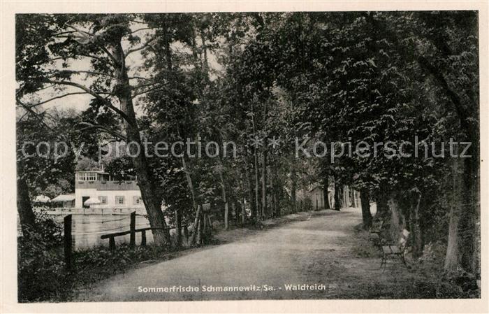 AK / Ansichtskarte Schmannewitz Der Waldteich Kat. Dahlen Sachsen