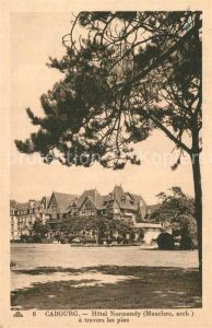 AK / Ansichtskarte Cabourg Hotel Normandy a travers les pins Kat. Cabourg