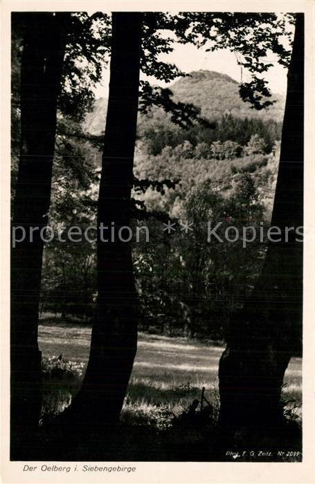 AK / Ansichtskarte Siebengebirge Oelberg Kat. Koenigswinter