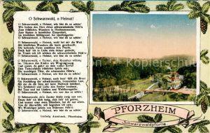 AK / Ansichtskarte Pforzheim Panorama Schwarzwaldpforte