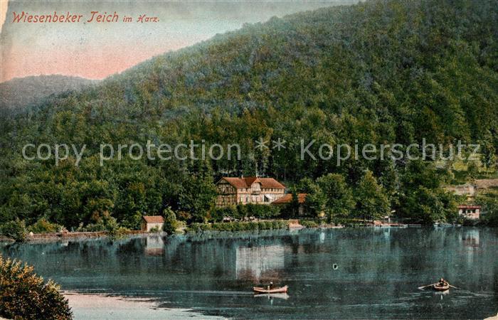 AK / Ansichtskarte Bad Lauterberg Hotel am Wiesenbeker Teich Kat. Bad Lauterberg im Harz