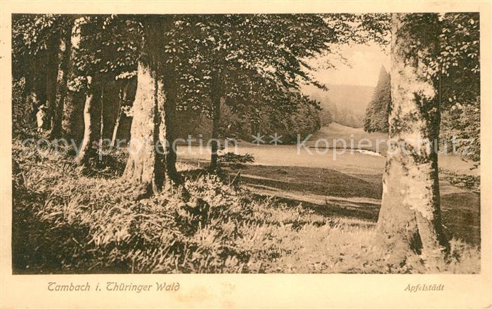 AK / Ansichtskarte Tambach Dietharz Landschaftspanorama Thueringer Wald Kat. Tambach Dietharz